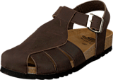 Scholl - Sisare Brown