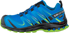 Salomon - Xa Pro 3D Gtx Union Blue/Methyl Blue/Gr