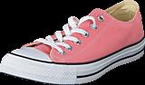 Converse - All Star-Ox Daybreak Pink/White/Black