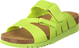 Scholl - Alabama Lime